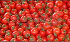 Δεσμεύτηκαν 890 κιλά ντομάτες Το προϊόν δεν έφερε την απαραίτητη σήμανση