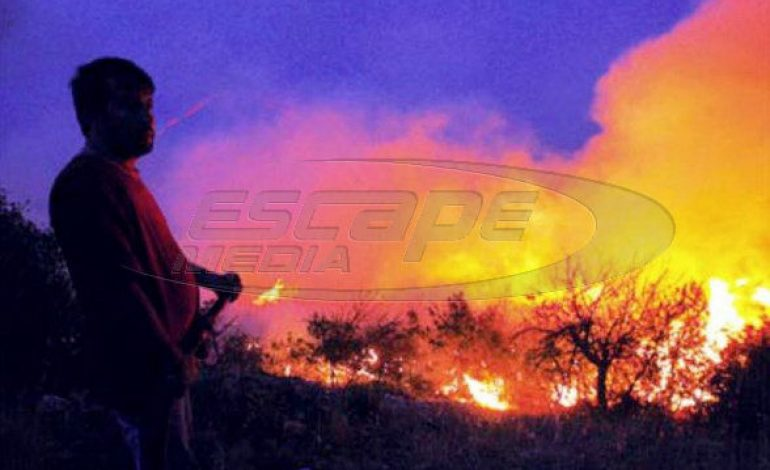 Περιορίστηκαν τα πύρινα μέτωπα στην Ηλεία – Μάχη των πυροσβεστών στις χαράδρες