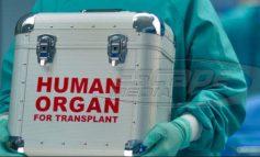 Αυξάνονται οι δωρεές οργάνων στην Ε.Ε.