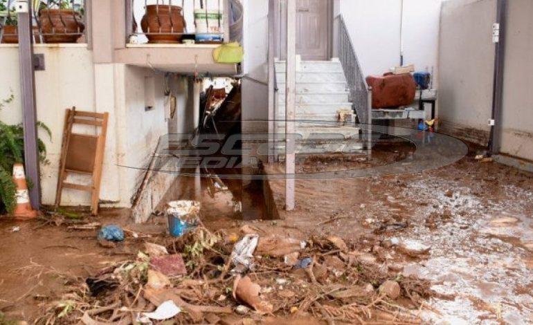 Πλιάτσικο στην Μάνδρα: Ρομά και αλλοδαποί κλέβουν ότι μπορεί να κλαπεί