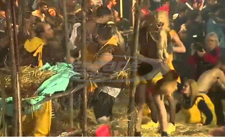 Καταδικάστηκαν οι Καρναβαλιστές που πετούσαν και ποδοπατούσαν κότες στον Τύρναβο