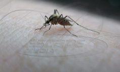 Πως το κινητό γίνεται «όπλο» ενάντια στα κουνούπια