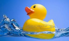 Το χαριτωμένο λαστιχένιο παπάκι στη μπανιέρα δεν είναι τόσο αθώο, λένε οι επιστήμονες