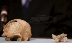 Εντοπίστηκε αρχαιοελληνικός θησαυρός 40 εκατ. ευρώ σε επιχείρηση Europol
