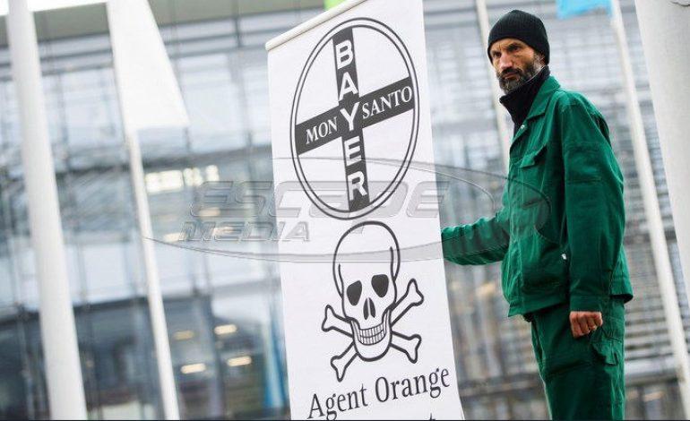 Ως καρκινογόνο χαρακτηρίστηκε γνωστό ζιζανιοκτόνο – Αποζημίωση μαμούθ από την εταιρεία