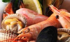 ΕΦΕΤ: Τι πρέπει να προσέξετε στα ψώνια για την σαρακοστή - Πώς θα καταλάβετε αν είναι φρέσκα το χταπόδι και τα καλαμαράκια