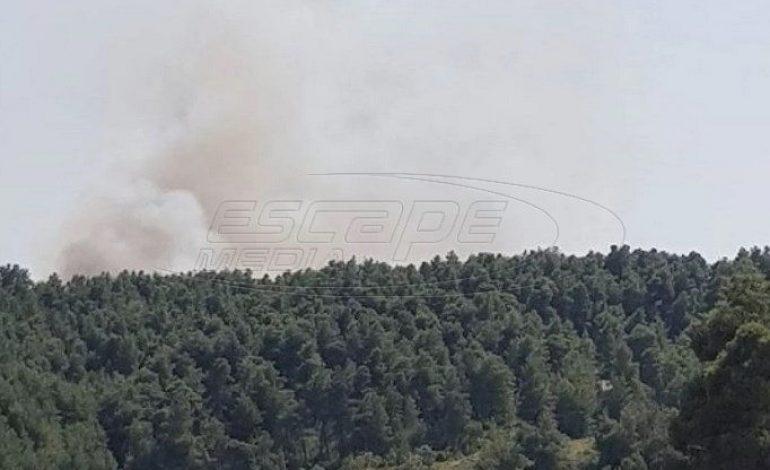 Φωτιά τώρα στην Εύβοια – Καίει δασική έκταση