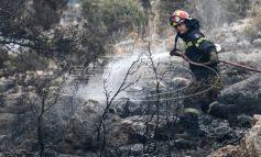 Φωτιά στην Εύβοια: Άρση τηλεφωνικού απορρήτου ζητούν οι αρχές - Σαφείς ενδείξεις εμπρησμού - Από στουπιά μέχρι γκαζάκια βρέθηκαν στο σημείο