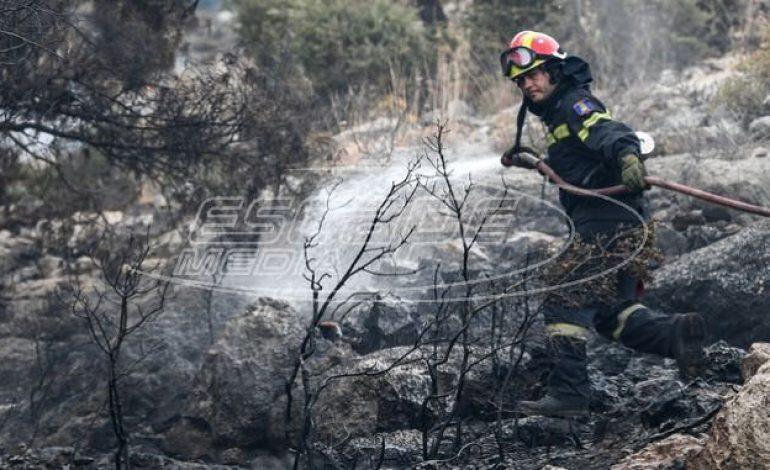 Ανεξέλεγκτη η φωτιά στον Πρόδρομο Βοιωτίας – Ενίσχυση των πυροσβεστικών δυνάμεων