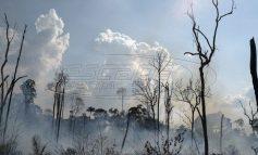 Αμαζόνιος: Γιατί μάθαμε τώρα για τις φωτιές παρότι καίγεται εδώ και τρεις εβδομάδες