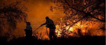 Ολονύχτια η μάχη των πυροσβεστών στην Σάμο με συγκρατημένη αισιοδοξία