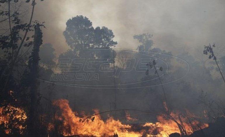 Παγκόσμια ανησυχία: Οι φλόγες συνεχίζουν να καίνε τον Αμαζόνιο