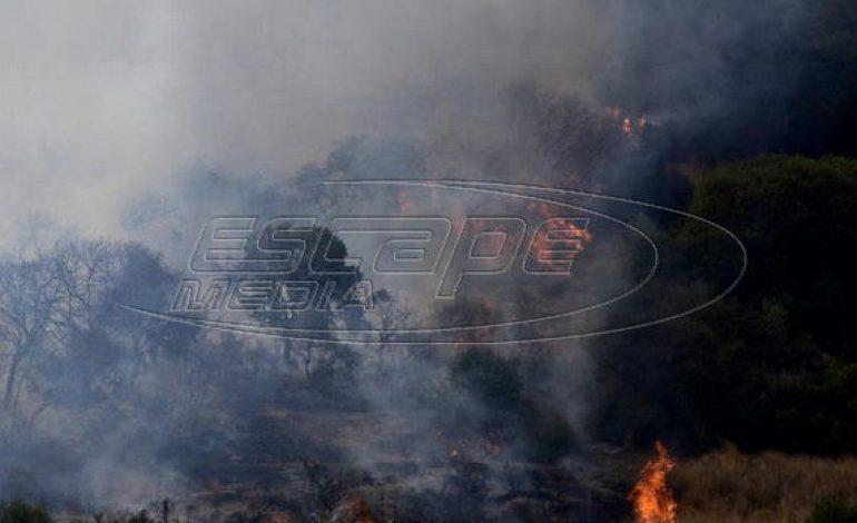 Ηλεία: Μαίνεται η πυρκαγιά σε τρία μέτωπα στις πλαγιές του Ερυμάνθου
