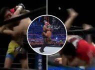 Η πιο επικίνδυνη λαβή που απαγορεύτηκε στο WWE