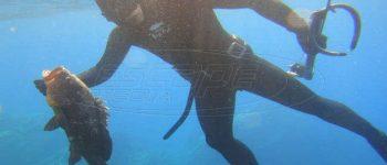 Απαγορεύονται λόγω κορονοιού το κολύμπι, η θαλάσσια αναψυχή και το ψαροντούφεκο