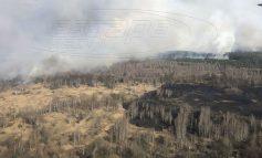 Δασική πυρκαγιά αυξάνει τη ραδιενέργεια στο Τσέρνομπιλ